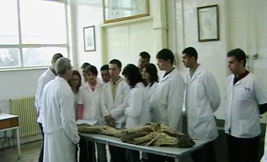לימודי רפואה ברומניה בשפה האנגלית