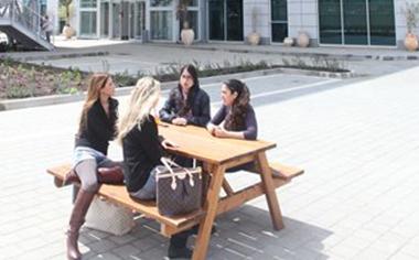 לימודים במרכז האקדמי פרס